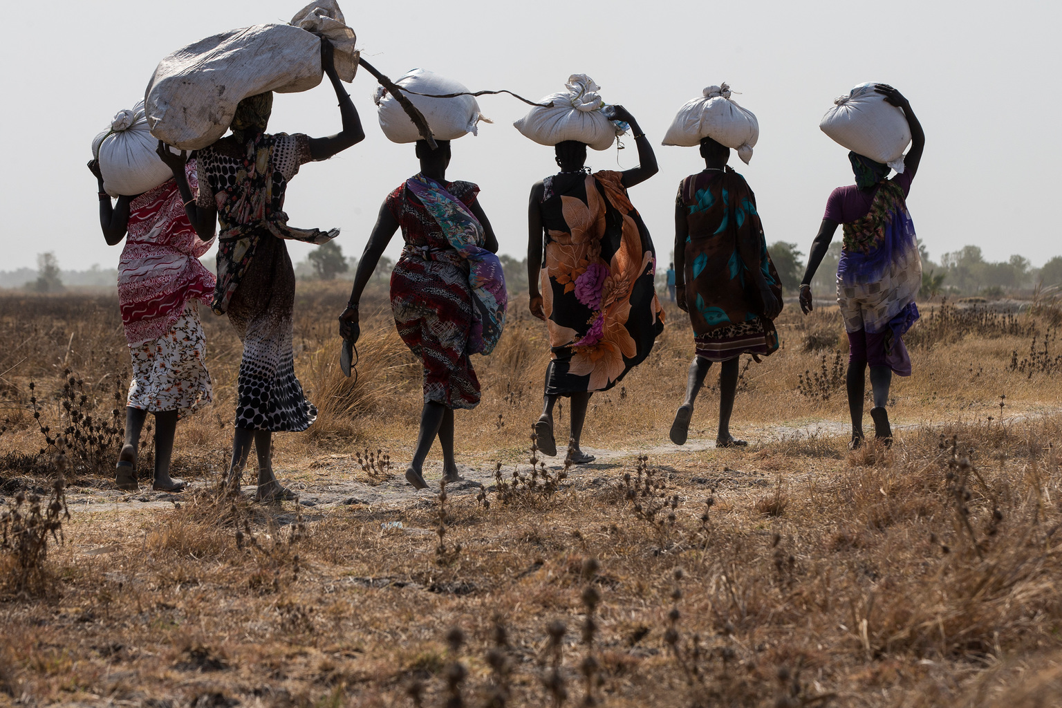 Women carry sacks of aid food in Thonyor, Leer county, South Sudan, February 24, 2017. In areas affected by insecurity and cut off from humanitarian assistance, including Leer, Koch and Manyedit counties, UNICEF, in collaboration with World Food Programme and partners, are working to reach the most vulnerable children with acute malnutrition through Rapid Response Missions and to re-establish static services in areas with relative calm. Further missions are planned in the coming days and weeks to address the nutrition crisis.  In March 2017, war and a collapsing economy have left some 100,000 people facing starvation in parts of South Sudan where famine was declared 20 February, three UN agencies warned. A further 1 million people are classified as being on the brink of famine. The Food and Agriculture Organization of the United Nations (FAO), the United Nations Children's Fund (UNICEF) and the World Food Programme (WFP) also warned that urgent action is needed to prevent more people from dying of hunger. If sustained and adequate assistance is delivered urgently, the hunger situation can be improved in the coming months and further suffering mitigated.   The total number of food insecure people is expected to rise to 5.5 million at the height of the lean season in July if nothing is done to curb the severity and spread of the food crisis. According to the Integrated Food Security Phase Classification (IPC) update released 20 February by the government, the three agencies and other humanitarian partners, 4.9 million people - more than 40 percent of South Sudan's population - are in need of urgent food, agriculture and nutrition assistance. Unimpeded humanitarian access to everyone facing famine, or at risk of famine, is urgently needed to reverse the escalating catastrophe, the UN agencies urged. Further spread of famine can only be prevented if humanitarian assistance is scaled up and reaches the most vulnerable.  A formal famine declaration means people have already started dying of hunger. The situation is the worst hunger catastrophe since fighting erupted more than three years ago. Across the country, three years of conflict have severely undermined crop production and rural livelihoods. The upsurge in violence since July 2016 has further devastated food production, including in previously stable areas. Soaring inflation - up to 800 percent year-on-year - and market failure have also hit areas that traditionally rely on markets to meet food needs. Urban populations are also struggling to cope with massive price rises on basic food items.  FAO, UNICEF and WFP, with other partners, have conducted massive relief operations since the conflict began, and intensified those efforts throughout 2016 to mitigate the worst effects of the humanitarian crisis. Working with over 40 partners and in close collaboration with WFP, UNICEF is supporting 620 outpatient therapeutic programme sites and about 50 inpatient therapeutic sites across the country to provide children with urgently needed treatment. Through a Rapid Response Mechanism (RRM carried out jointly with WFP, UNICEF continues to reach communit