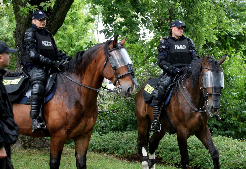 a7b712f7b7b6cc Konie formacji mundurowych, które zakończyły służbę, są z reguły  sprzedawane. Nikt - zdaniem