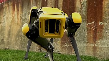 SpotMini - nowy robot Boston Dynamics