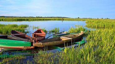 Rzeka Narew. Polska