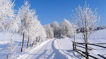 W tym roku prawdziwa zima jakoś nie chce do nas przyjść. Tymczasem my zatęskniliśmy za śniegiem! Dzięki użytkownikom zaprzyjaźnionego serwisu Fotoforum.gazeta.pl możemy sobie przypomnieć jak wygląda piękna śnieżna zima. Na zdjęciu: Kaszuby - pow. wejherowski - Łebno - ul. Leśna