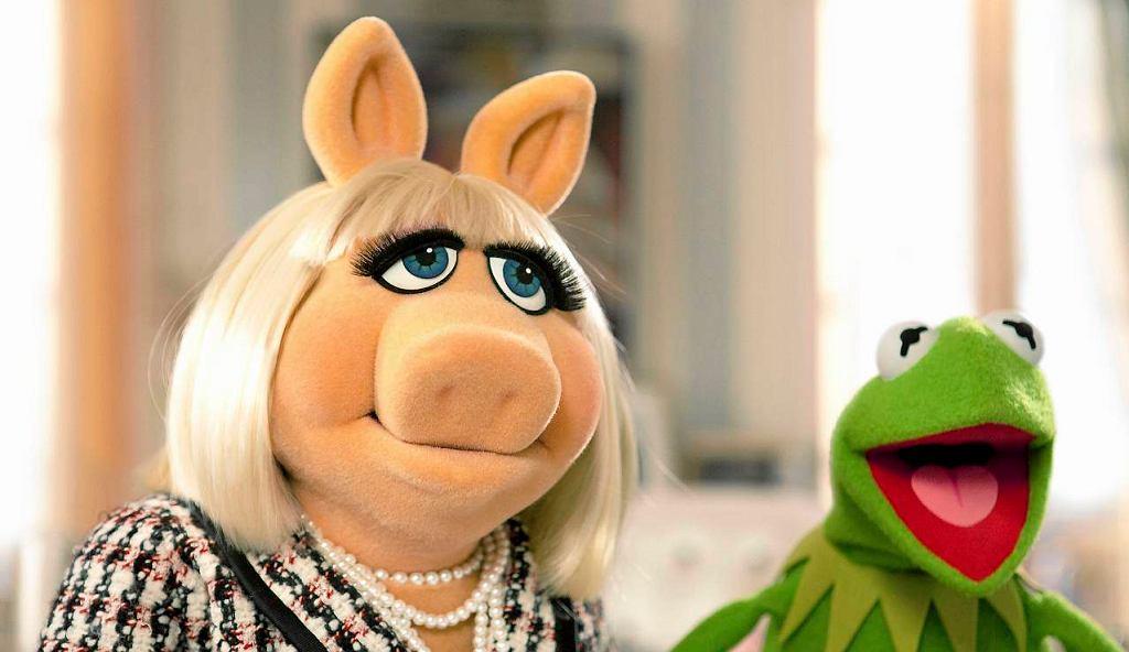 Panna Piggy i Kermit - gwiazdy ''Muppet Show''