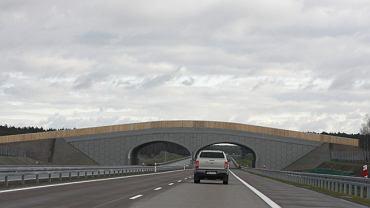 Jadąc autostradą należy poruszać się prawym pasem, lewy służy do wyprzedzania