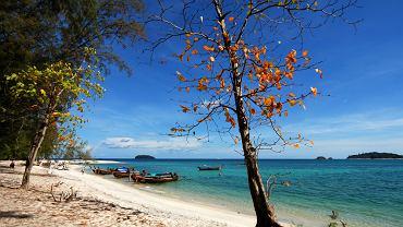Koh Adang, Tajlandia