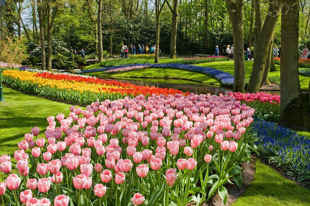 Holandia, Keukenhof