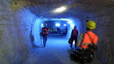 """Kadr z programu """"Narodziny Europy. Tajemnica kopalni w Kłodawie"""", http://ngc.gazeta.pl, emisja na kanale National Geographic Channel"""