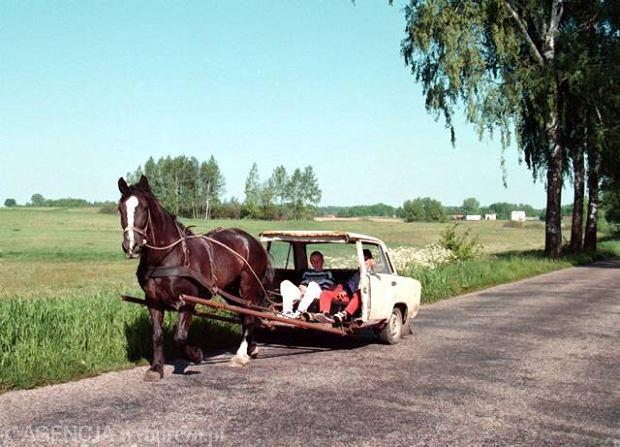Unijne dopłaty zabetonowały polską wieś