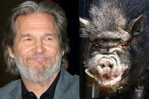 Jeff Bridges i świnia domowa.