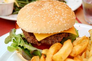 Wykształciuch kocha hamburgery