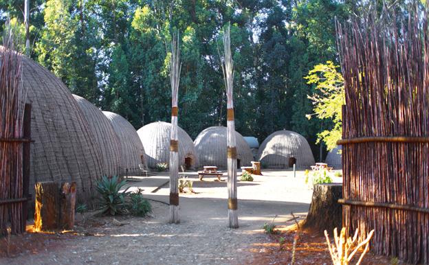 Suazi - Rezerwat Mlilwane