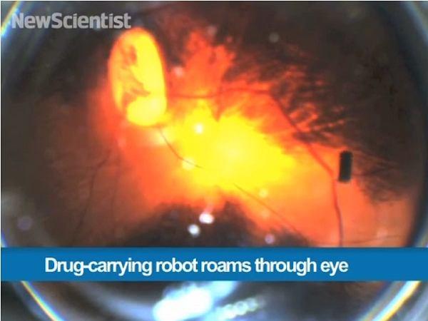 Miniaturowy robot pływa w oku martwej świni