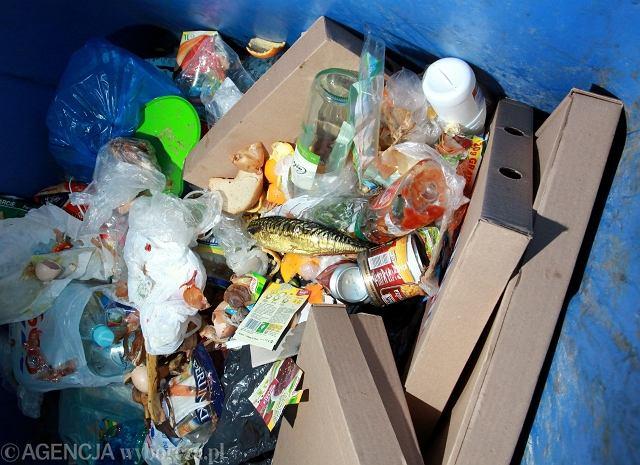 Marnujemy mnóstwo jedzenia. W naszych koszach ląduje nawet 9 mln ton żywności rocznie
