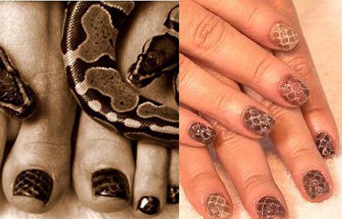 manicure ze skórą węża - coraz bardziej popularny