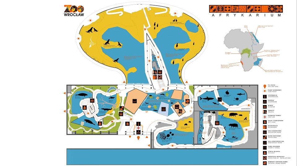 W Niedziele Otwarcie Afrykarium Zobacz Nasz Poradnik Mapa