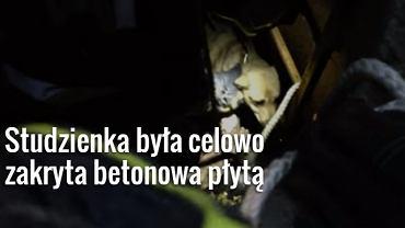 Pies, uratowany ze studzienki przez strażaków i trenera Warty Poznań