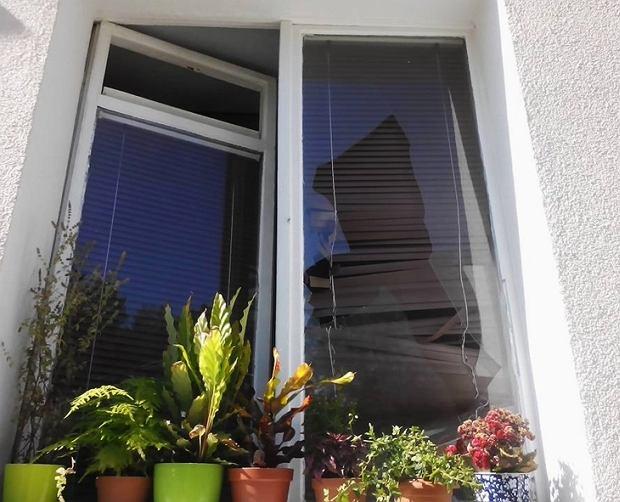 Okno Rafalali
