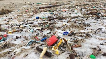 Morze Bałtyckie po sztormie wyrzuciło na brzeg masy śmieci