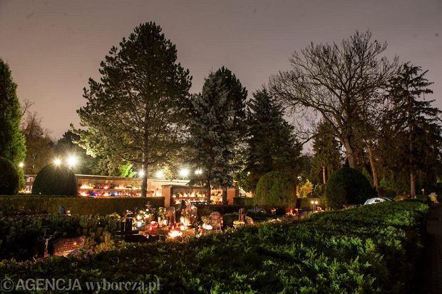 Zdjęcie numer 19 w galerii - Cmentarze najpiękniej wyglądają nocą. Zobacz zdjęcia z wrocławskiej nekropolii