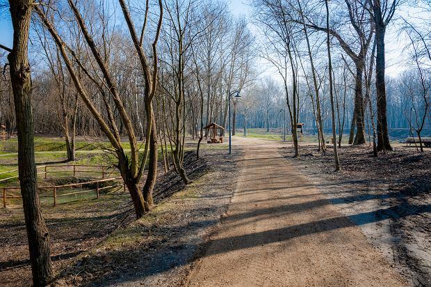 Zdjęcie numer 23 w galerii - Park Tysiąclecia w Sosnowcu w trakcie rewitalizacji.