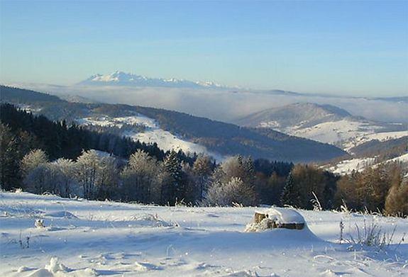 Nad Wierchomlą Fot. www.beskidsadecki.eu