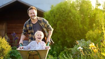 Sprzęt ogrodniczy - co jest potrzebne?