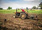 Konsumenci zapłacą za pomoc PiS rolnikom