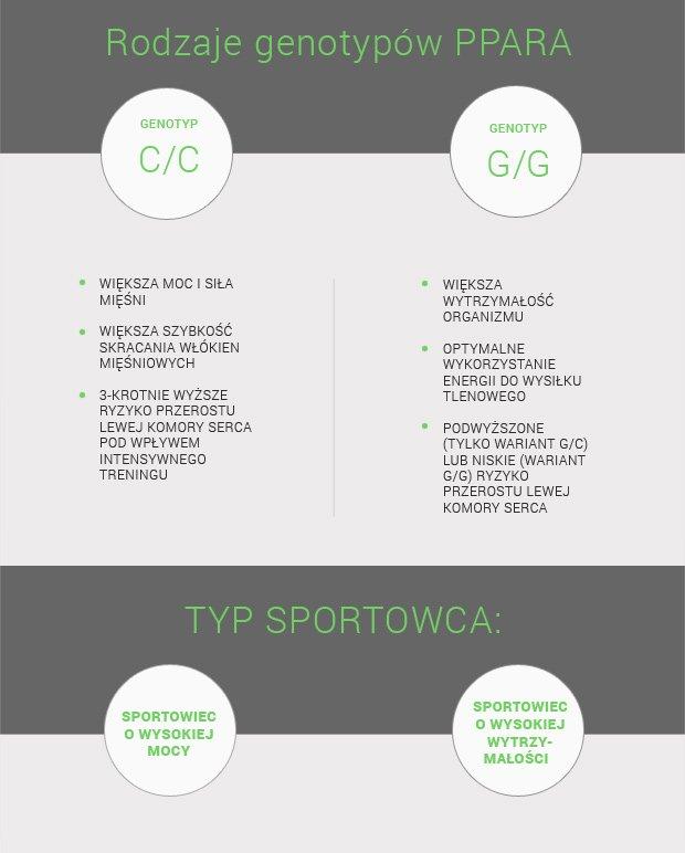 Cechy sportowe związane z wydajnością energetyczną w zależności od genotypu PPARGC1A Gly482Ser.