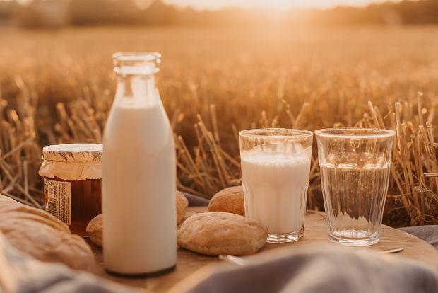 Mleko bez laktozy - co warto wiedzieć i jak czytać skład? Dla kogo jest najlepsze?