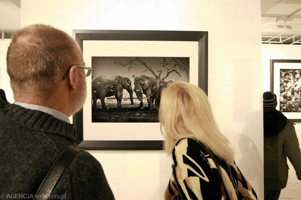 [zdjęcie poglądowe] Płocka Galeria Sztuki. Wystawa fotografii Tomasza Gudzowatego