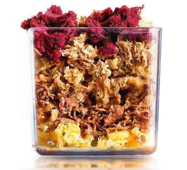 Z pulpy warzywnej pozostałej po wyciskaniu soków możemy przygotować wiele potraw