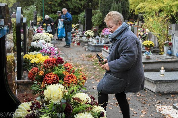 Zdjęcie numer 23 w galerii - Wszystkich Świętych we Wrocławiu. Cmentarze w kwiatach [ZDJĘCIA]