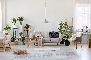 Salon nowoczesny i przytulny - jak urządzić, jak pomalować? Podpowiadamy!