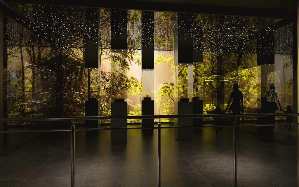 6. Zmiana treści podpisu pod zdjęcie: Bursztynowy las, ekspozycja w Muzeum Bursztynu w Gdańsku