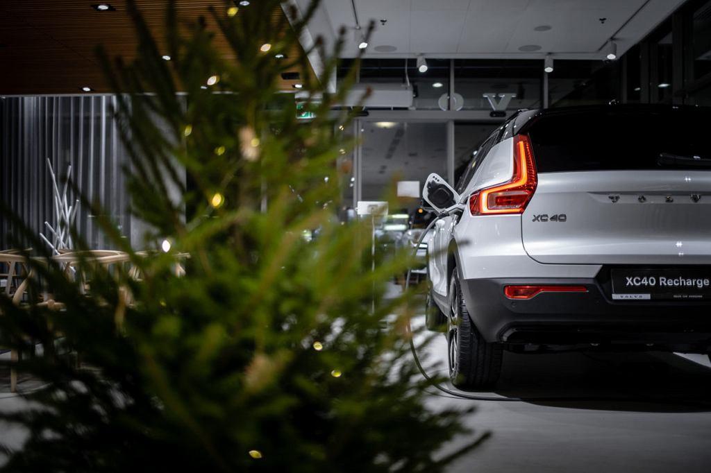 Wypożyczalnia choinek Volvo