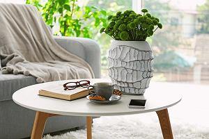 Stolik kawowy - jak wybrać idealny model do salonu?
