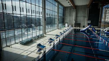 Kiedy otwarcie siłowni, basenów i klubów fitness? Rząd luzuje obostrzenia