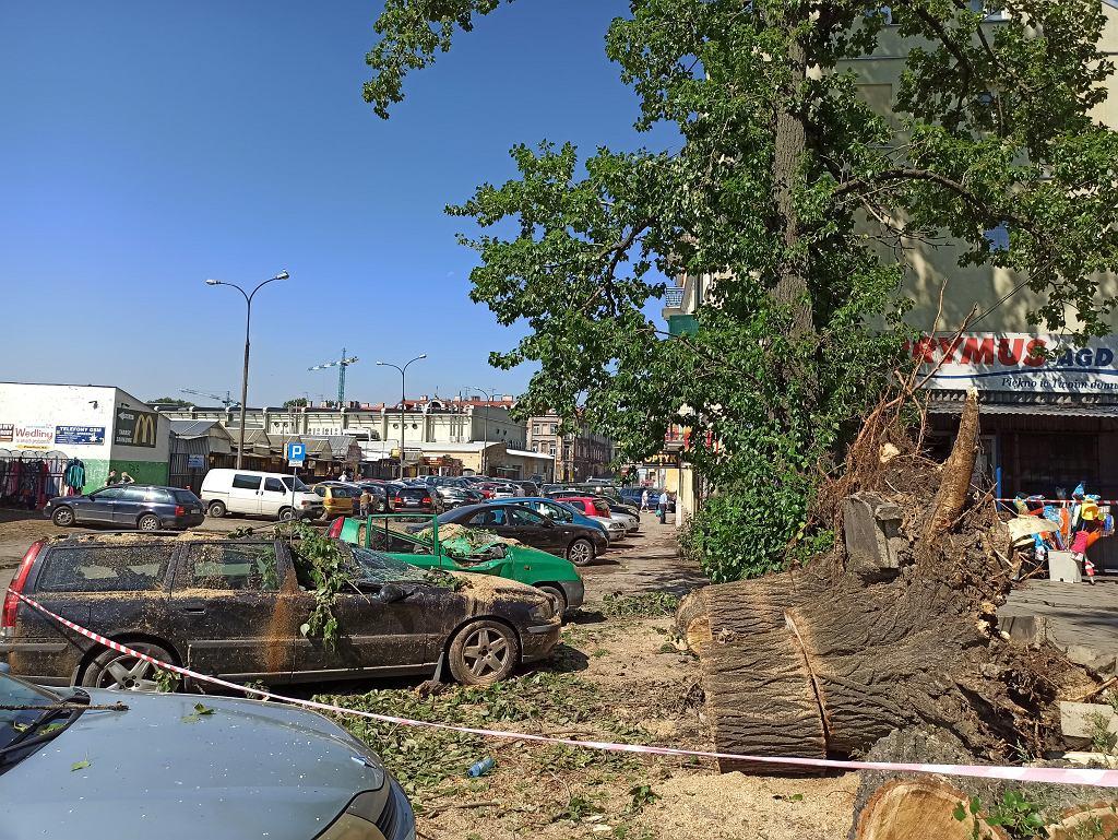 Zniszczone drzewa w okolicach dworca PKS w Lublinie