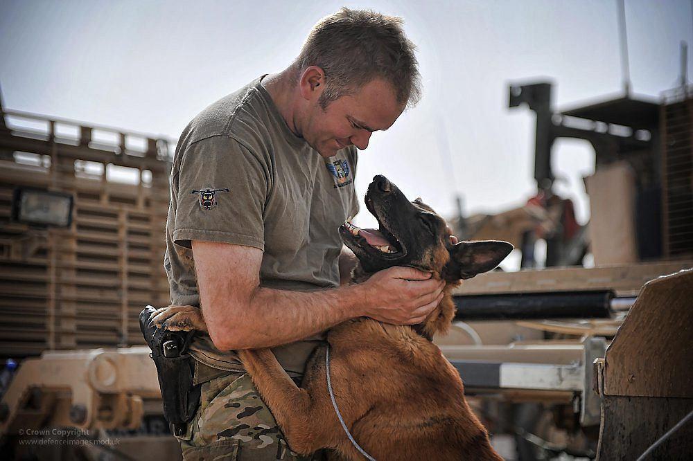 Żołnierz brytyjskiej armii z psem w Afganistanie