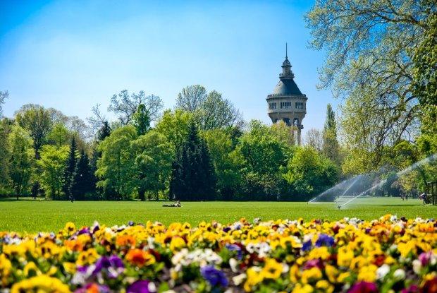 Wyspa Małgorzaty i wieża wodna/ Fot. Shutterstock