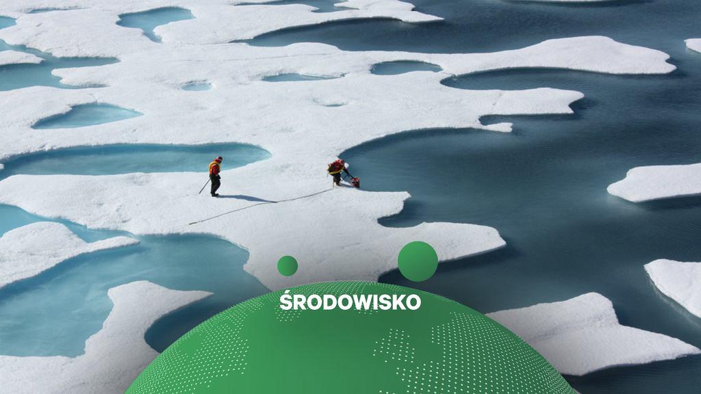 Topnienie lodu arktycznego jest jednym z punktów krytyczny dla klimatu