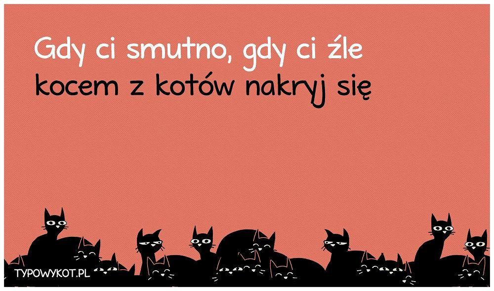 Akcesoria z kotem: Gdy ci smutno, gdy ci źle kocem z kotów nakryj się.