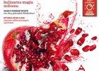 Lutowy numer magazynu Kuchnia już w sprzedaży!