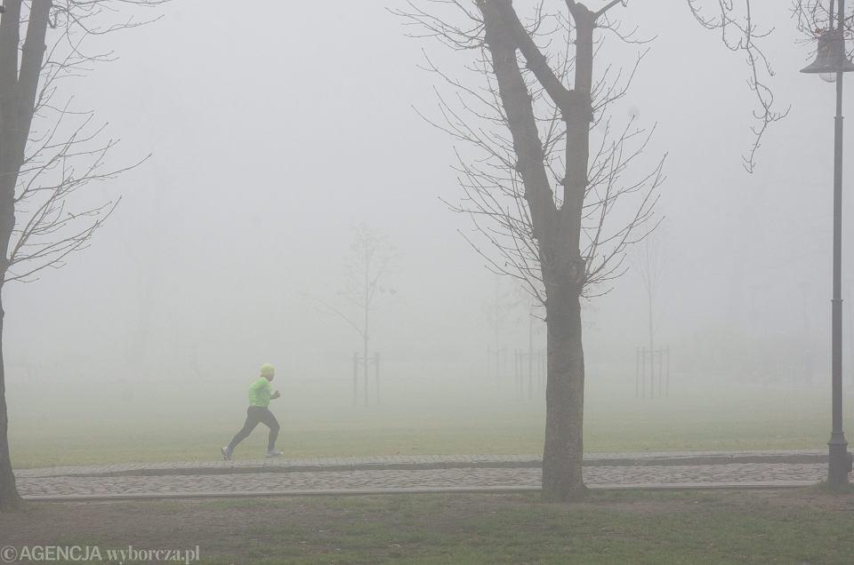 Mgła może wystąpić na sporym obszarze województwa śląskiego