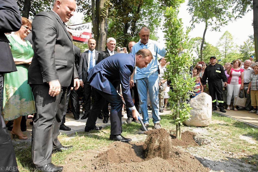 Prezydent Duda zasadza dąb. Jędrzejów, 10 sierpnia