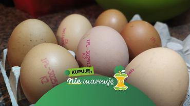 Wyrzucasz jajka po terminie? Być może całkiem niepotrzebnie marnujesz jedzenie