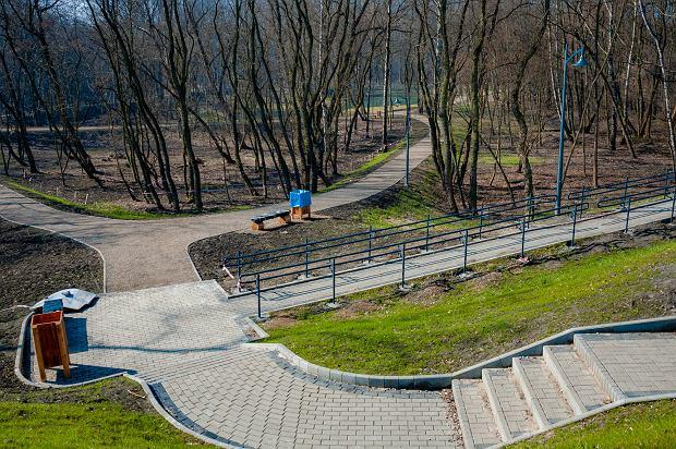 Zdjęcie numer 20 w galerii - Park Tysiąclecia w Sosnowcu w trakcie rewitalizacji.