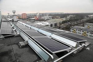 Zmienili wieżowce w elektrownię słoneczną i nie martwią się o ceny prądu. Bilans ekonomiczny jest zadowalający