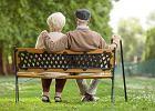 """Szokująca analiza. Kto zarobi na """"Polskim ładzie""""? Odpowiedź brzmi: emeryci, a nie osoby biedne"""