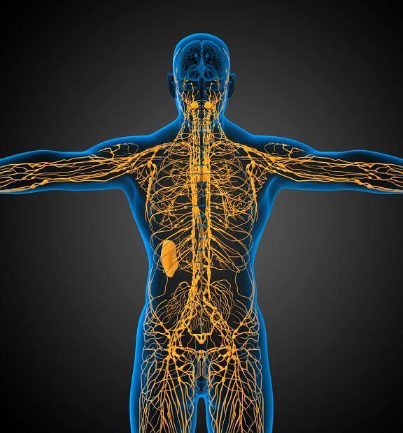 Rusza akcja sprawdzania drożności kanałów limfatycznych
