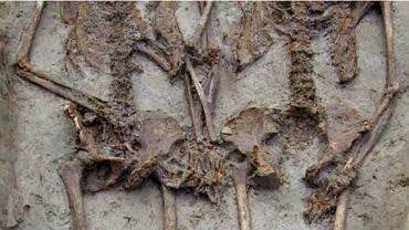 Szkielety kochanków z Moderny